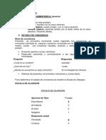 HC. Examen  Neurologico