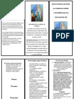 FIESTA PATRONAL EN HONOR ALA VIRGEN DE LOURDES