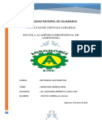 Presentar PDF Imprimir