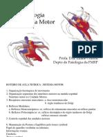Sistema Nervoso Motor
