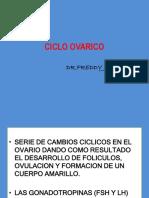 3. Ciclo ovarico