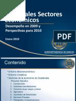 Estudio de los Principales Sectores de la Economía de Guatemala EMPRESAS 2009