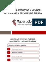 aprendaaexportaryvenderaccesoriosyprendasdealpaca-170816231619 (1)