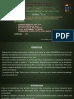 TALUD PARIAMARCA -  GEOTECNIA