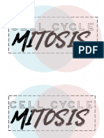 GROUP4_Cell Cycle & Mitosis