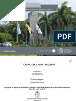 Presentación_Ballenas Chuchupas 2