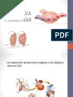 fisiologia pulmonar