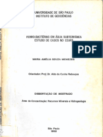 Menezes__Mestrado.pdf