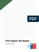 24941_Región Del Biobío