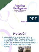 agentesmutgenos-120624122842-phpapp02