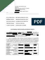 """Recurso Proteccion contra Alex Smith, creador del software espía """"Antorcha""""."""