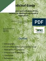 Medicinal Marijuana Presentation