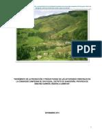 Proyecto de Reforestacion en Chuyugual