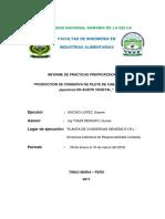 Informe de Practica Preprofesionales
