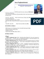 CV, Mehran Naghizadehrokni