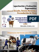 Capacitacion y Evaluacion Espermatica Semen Sexado, Semen Reverso y Fecundacion in Vitro.
