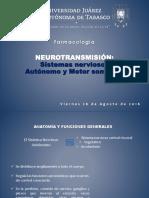 NEUROTRANSMISIÓN