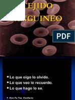 Sangre Nueva