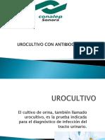 Urocultivo Con Antibiograma