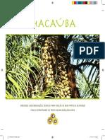 MDA - Macauba Diretrizes e Recomendacoes