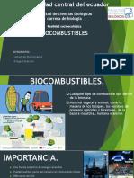 biocombustibles (1)