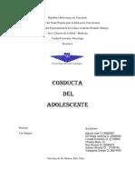 Conducta Del Adolescente