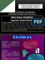 Enzimas - Unprg - 2017 II