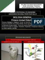 Biologicos y Quimicos 2017 II - UNPRG