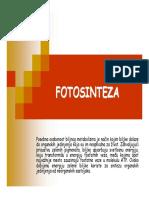 Fotosinteza I