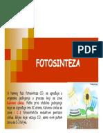 Fotosinteza II