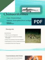Orden Chimaeriformes1