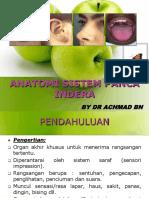 Anatomi Fisiologi Sistem Panca Indra