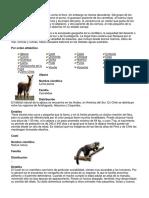 Fauna de Chile