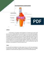 05 Irrigacin Pulmonar Continuacion 1 [1]