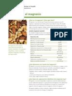 Magnesium DatosEnEspanol