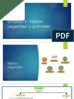 Unidad IV. Tejidos Vegetales y Animales