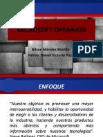 Daniel Victoria Microsoft Openness