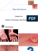 Bullous dermatoses112
