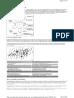 Tren De Engranaje Y Temporización De Motor.pdf