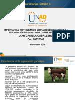 UNIDAD 1 - PASO 1