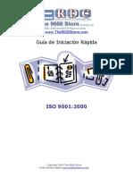Guia Iniciacion Rapida Iso 9001