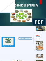 agroindustria conceptos
