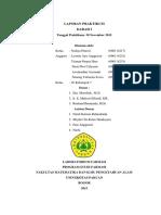 Laporan Praktikum Anfisman Darah i