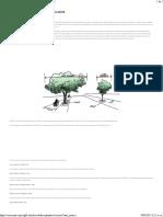 8 Arboles Ideales Para Plantar en La Acera - Ecocosas