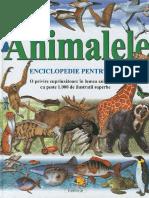Animalele Enciclopedie.pentru.copii Ed.flamingo.gd TEKKEN