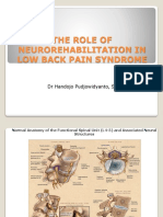 The Role of Neurorehabilitation in Low Back Pain Revisi