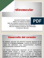 Cardiovascular (EM Carlos y hib