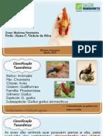 Avicultura_Completa (1)