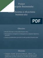 Eficienţa Şi Eficacitatea Businessului