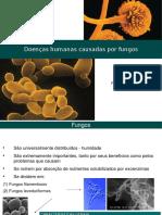 Doenças Humanas Causadas Por Fungos